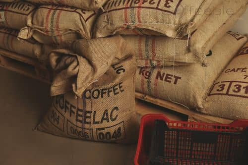 Coffee Storage in Burlap Sacks