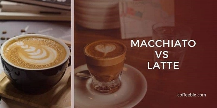 a side by side photo of a latte vs a macchiato with a brown filter
