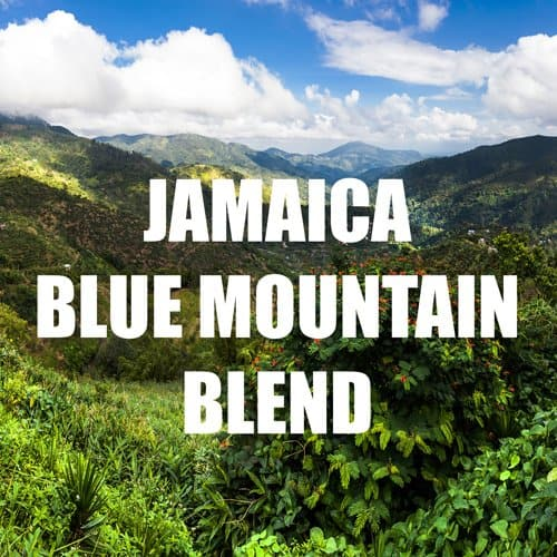 volcanica coffee blue mountain blend