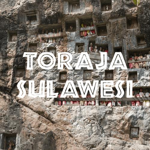 volcanica toraja sulawesi