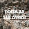 Toraja-Sulawesi-coffee