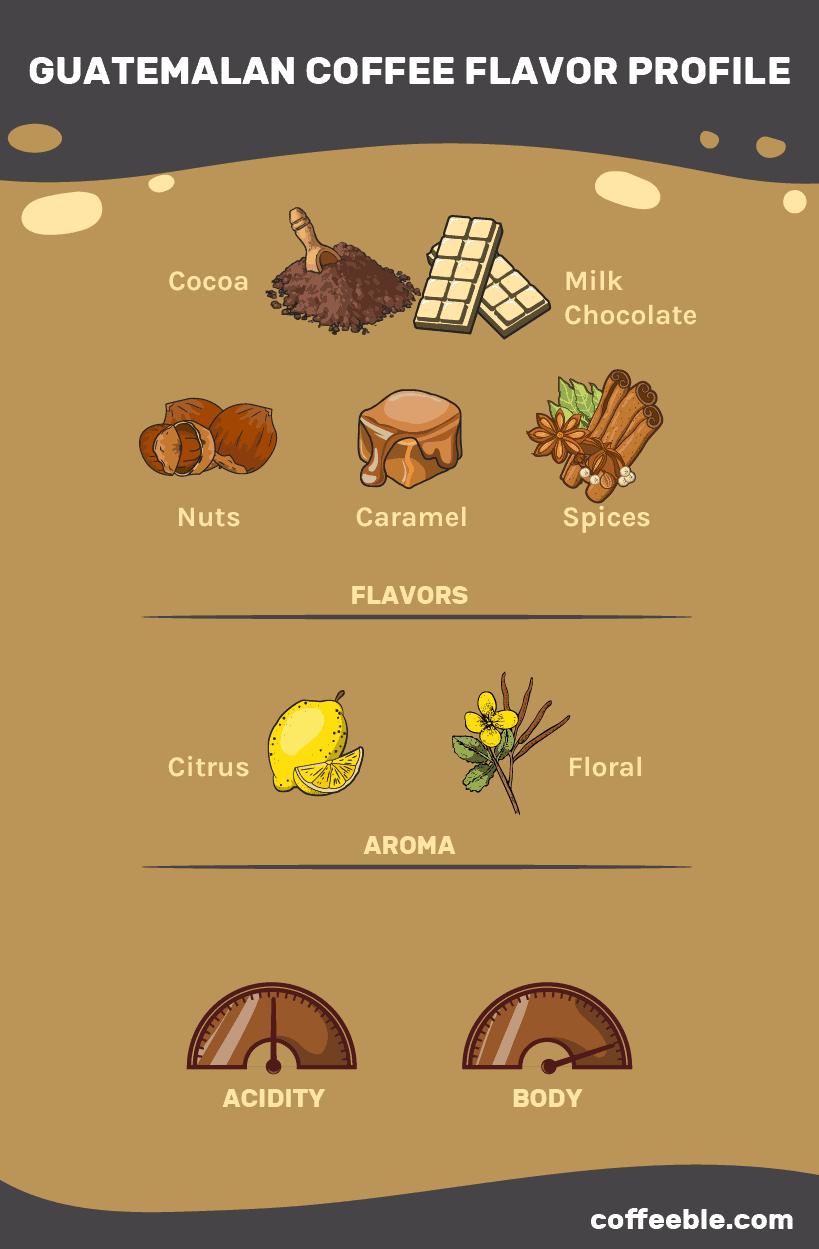 Flavor profile of Guatemalan beans