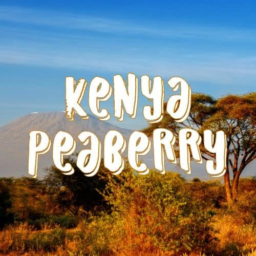 KENYA_PEABERRY